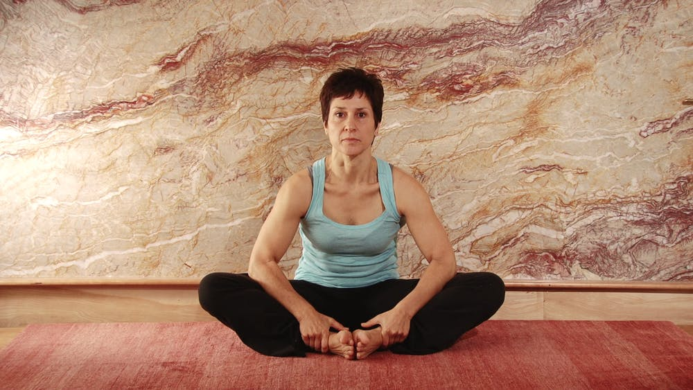 Lotus Opener (sitting) - Ending Stretch Position